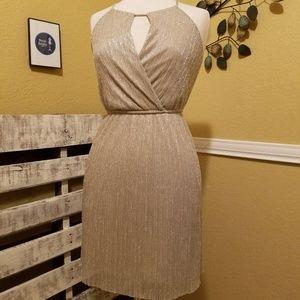 Sweet Storm Silvery dress Size Small